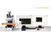 全景組織細胞定量分析系統  免疫組化/熒光分析系統TissueFAXS plus